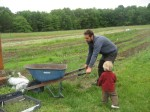 Matt playing with the wheelbarrow