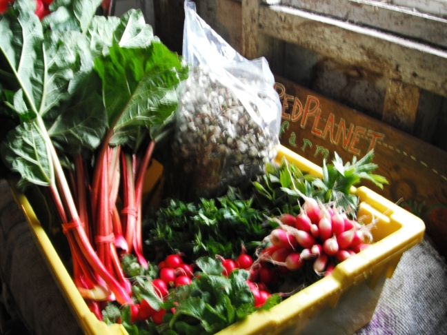Early Spring CSA starts in March, sign up starts now!