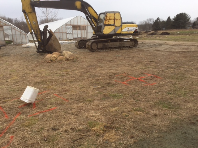 excavator is ready.JPG