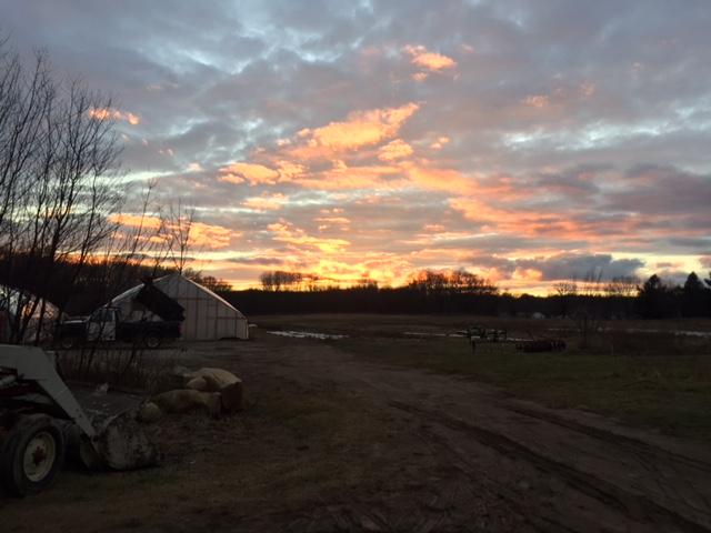 january sunset.JPG